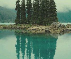 tree, nature, and lake image