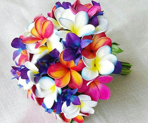 bouquet, colors, and tropical image