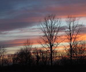 beautiful, night, and paysage image