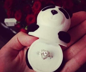 panda, ring, and sweet image
