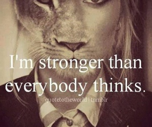 strong, lion, and quotes image