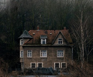 dark, woods, and estate image