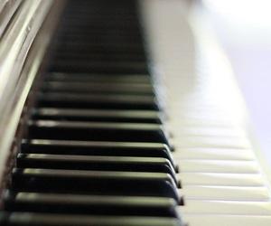 einstein, piano, and keys image