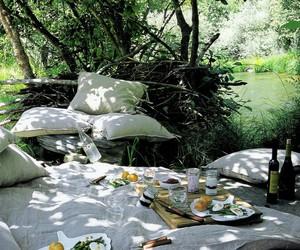 picnic, nature, and food image