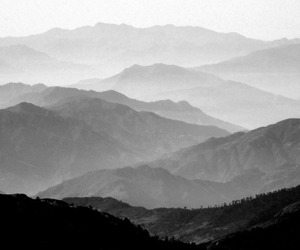 black and white, black, and nature image