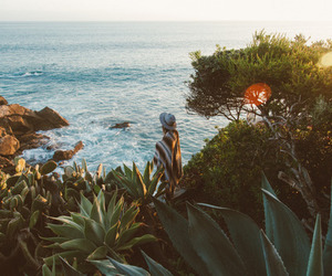 nature, summer, and beach image