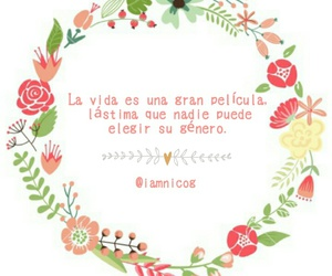frases, textos, and letras image