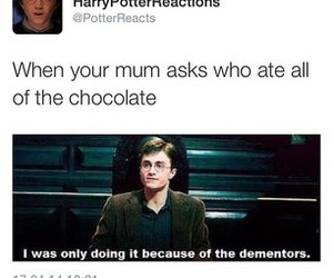 harry potter, funny, and chocolate image