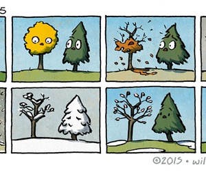 tree, season, and summer image