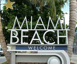 beach, Miami, and 👙 image