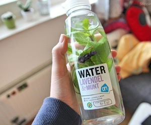 mint, quality, and water image