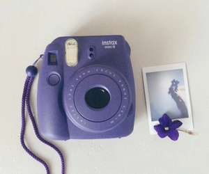 purple, flowers, and camera image