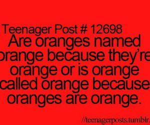 orange, funny, and teenager post image