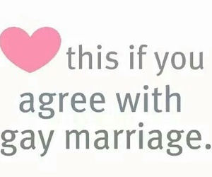 gay, love, and marriage image