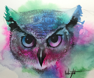 cool, owl, and rainbow image
