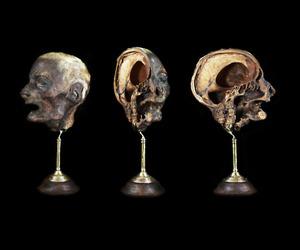 mummified and ryan matthew image
