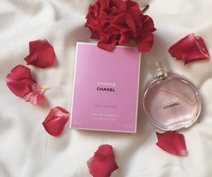 chanel, fragrance, and rose image