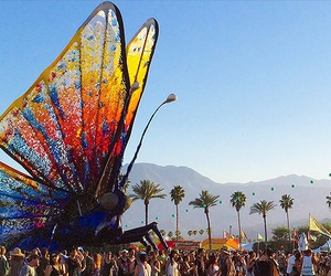 coachella, festival, and butterfly image