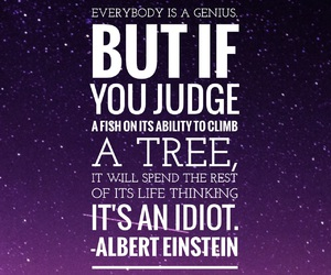 einstein, true story bro, and motivational image