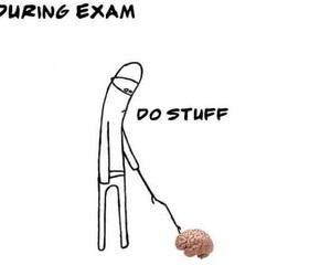 funny, exam, and brain image
