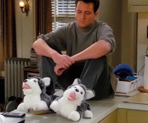 friends, chandler, and chandler bing image