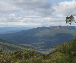 australia, nature, and blue mountains image