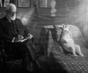 rabbit, freud, and bunny image