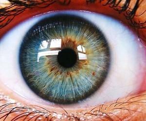 amazing, beautiful, and eye image