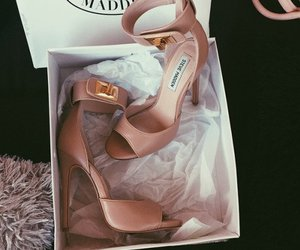 heels, style, and steve madden image