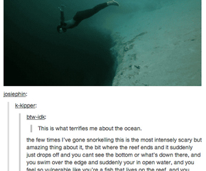 funny, ocean, and humor image