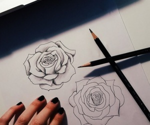 draw, flowers, and bsckground image