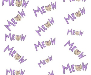 background, cat, and meow image