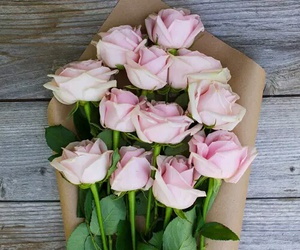 rosas and flores image