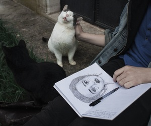 'art', 'cat', and 'pale' image