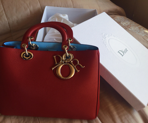 amazing, bag, and dior image