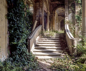 nature, stairs, and abandoned image