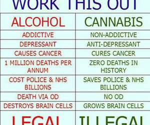 weed, alcohol, and illegal image