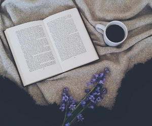 bed, blogger, and book image