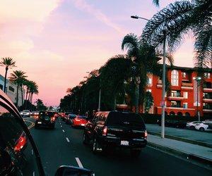 car, la, and palm trees image