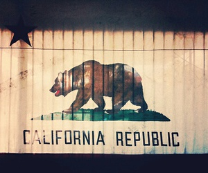 california, flag, and bear image