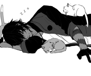 touken ranbu and cat image