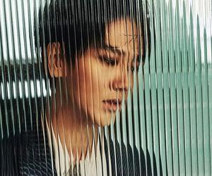 art, korean, and super junior image