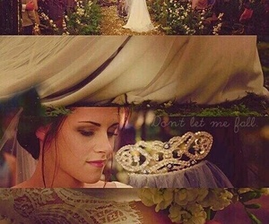 bella and twilight image