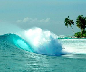 beach, waves, and paradise image