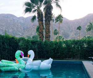 coachella and pool image
