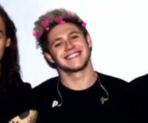 icon, niall, and birds image