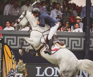 amazing, horses, and jump image