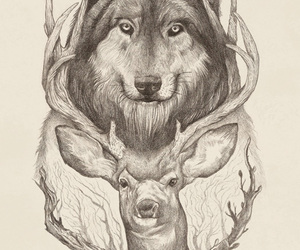 art, deer, and wolf image