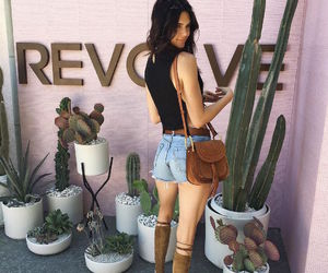 kendall jenner and coachella image