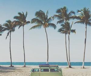 beach, palmas, and palms image